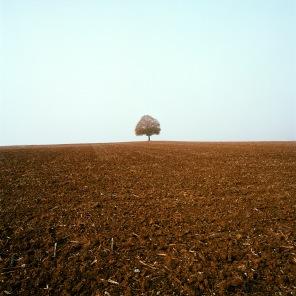 De plaine er d'eau © Hugo Miserey